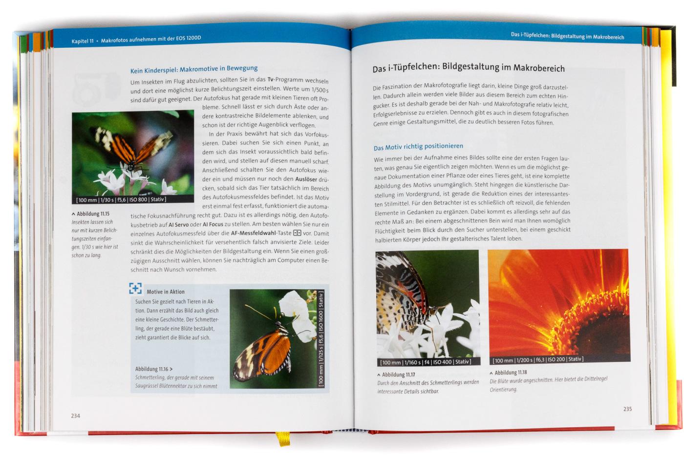 Canon EOS 1200D: Das Handbuch zur Kamera von Dietmar Spehr
