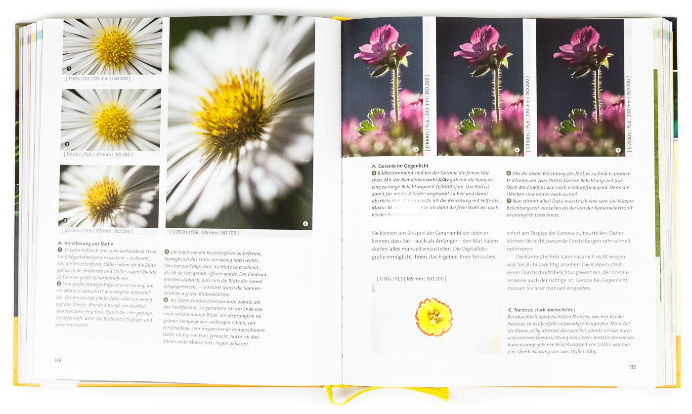 Naturfotografie: Der große Fotokurs von Ingo Seehafer